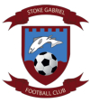 Stoke Gabriel Football Club Sport South Devon