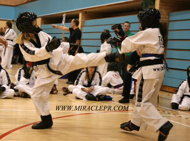 TAGB Southern South West Championships Sport South Devon
