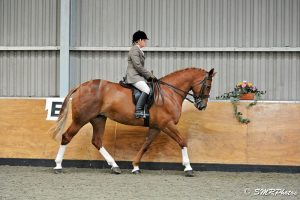 SHOW HUNTER 1ST